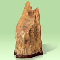 Eco-Excellence - Re-claimed Wood Award
